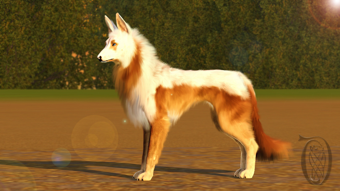 Dovahkiin Kennel Sims Kennel Club